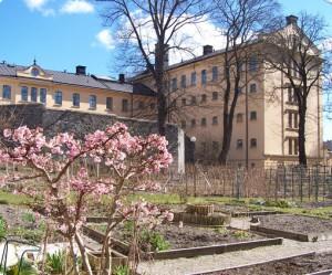 Langholmen (Стокгольм, Швеция)